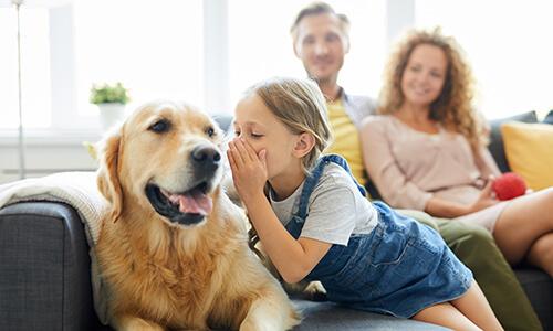 Klantenervaringen Hondencoach Ariane