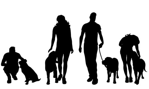 Lezingen Hondencoach Ariane Willocx